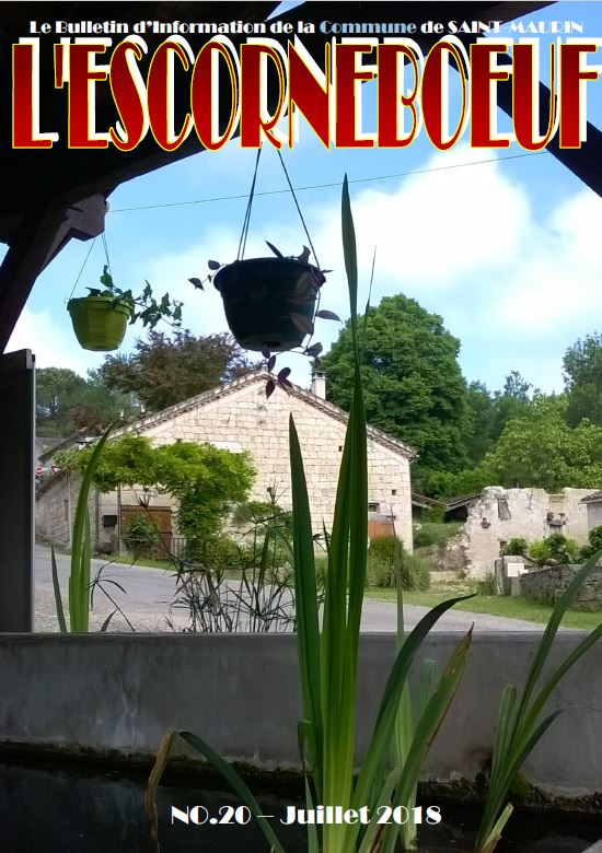 L ESCORNEBOEUF NO20 COUVERTURE